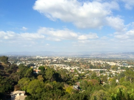 The Valley.