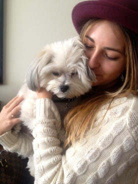 My friends puppy Bouge!